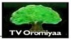TV Oromiyaa