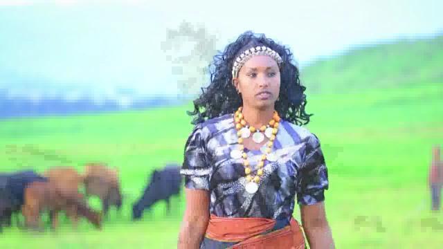 Arhiibuu - Mehandis Galatoo [New Afaan Oromoo Walloo Song]