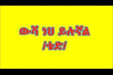 Amharic Poem By Ted ውሻ ነህ ይሉኛል